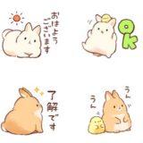 もふウサギ