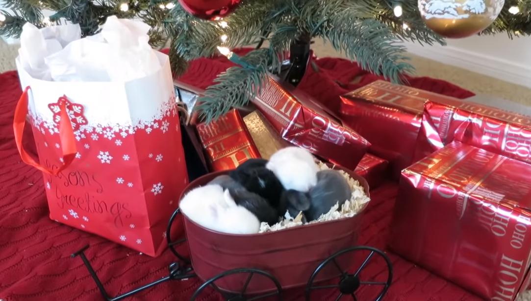 うさぎ クリスマスツリー